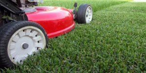 Hamilton Lawn Mowing